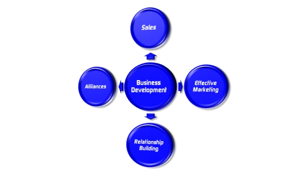 AISCENT Business Development Services